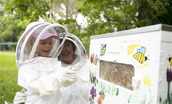 ABC's reality series The Great Bee Challenge has been nominated in 2020 International Format Awards